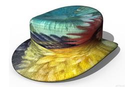 Шляпа из расплющенного петуха деревенского