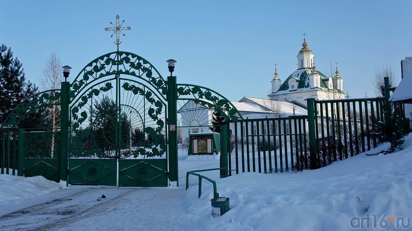 Фото №91809. Собор во имя святых апостолов Петра и Павла. Пермь, январь 2012