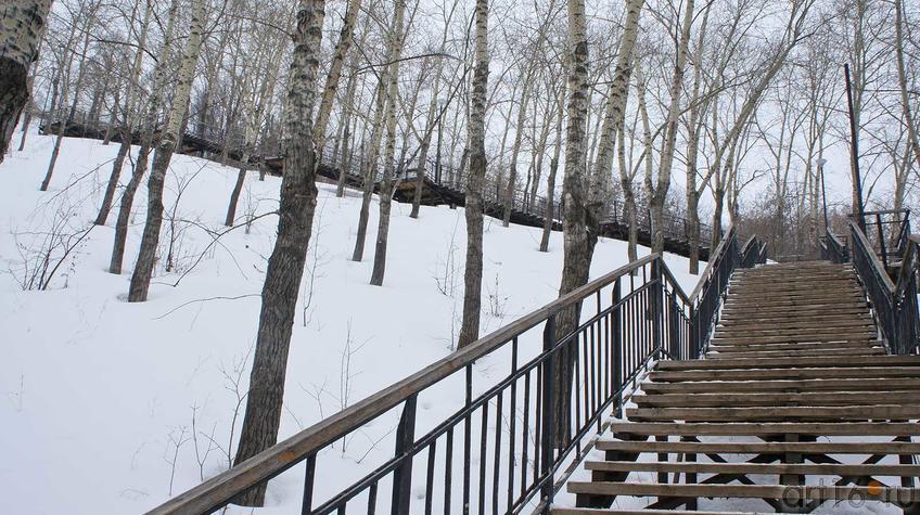 Фото №92228. Лестница на горе Вышка