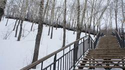 Лестница на горе Вышка