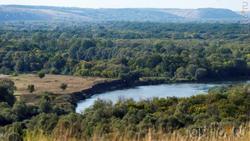 Река Тихоя Сосна.  Виден высокий правый берег