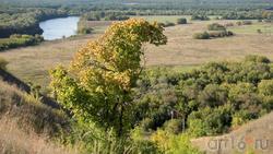 Вид с плато на долину реки Тихоя Сосна