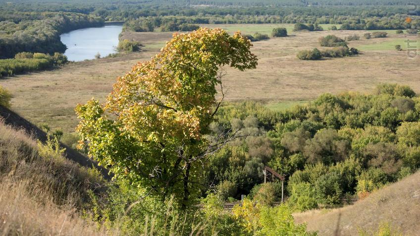 Вид с плато на долину реки Тихоя Сосна::Дивногорье. 2017 сентябрь