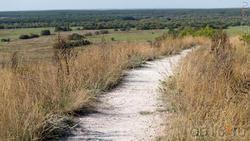 Меловая дорожка на плато. Верхний слой  на 15-20% состоит из мела. Ниже 80 см - чистый мел