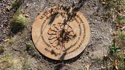 Известняк осадочная горная порода с примесями минералов. Фрагмент экспозиции
