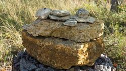 Известняк -  Фрагмент геолого-палеонтологической экспозиции