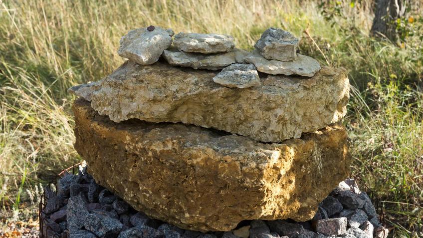 Известняк -  Фрагмент геолого-палеонтологической экспозиции::Дивногорье. 2017 сентябрь