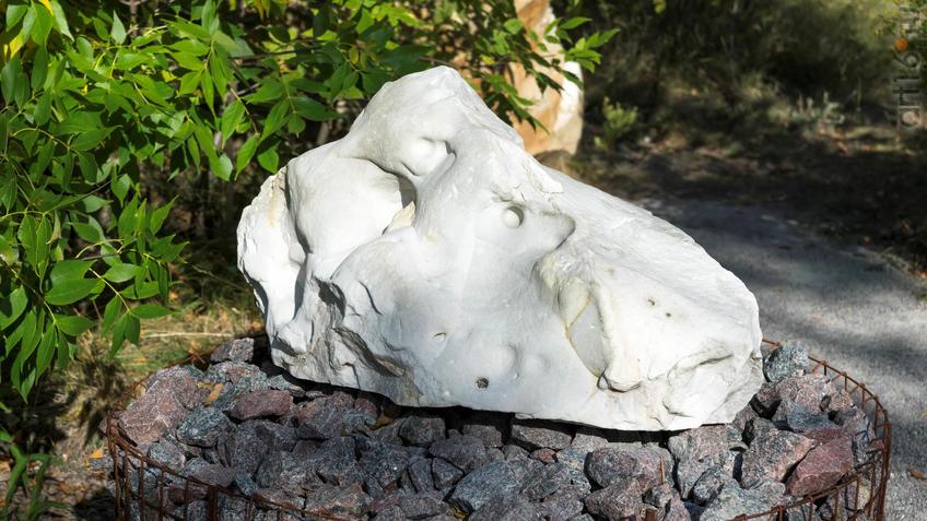 Песчанник.  Фрагмент геолого-палеонтологической экспозиции::Дивногорье. 2017 сентябрь