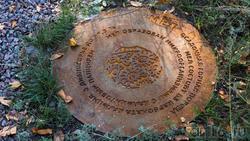 Мел.  Фрагмент геолого-палеонтологической экспозиции