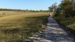 Дорожка вдоль посадок к археологическому парку