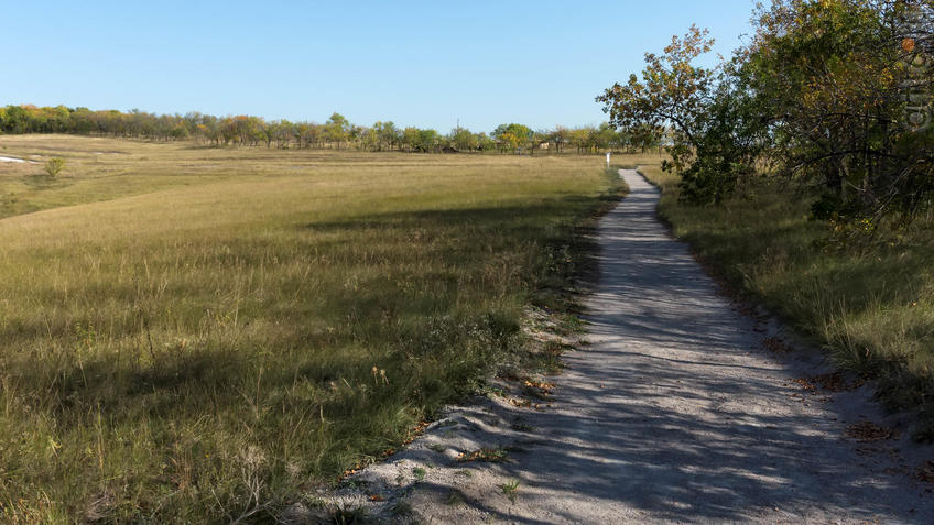 Дорожка вдоль посадок к археологическому парку ʺОт кочевий к городамʺ::Дивногорье. 2017 сентябрь