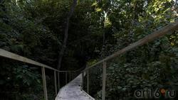 Лестница, ведущая к Дивногорскому Свято-Успенскому мужскому монастырю