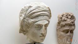 Голова «супруги Вазамара»