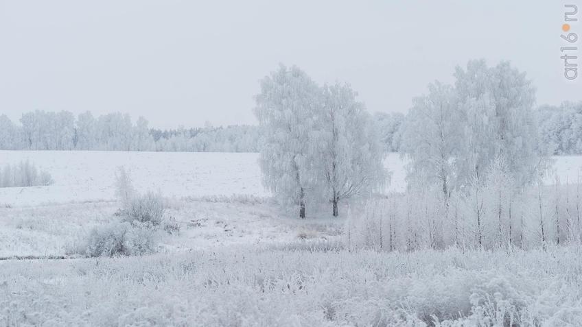 ::Зимние зарисовки