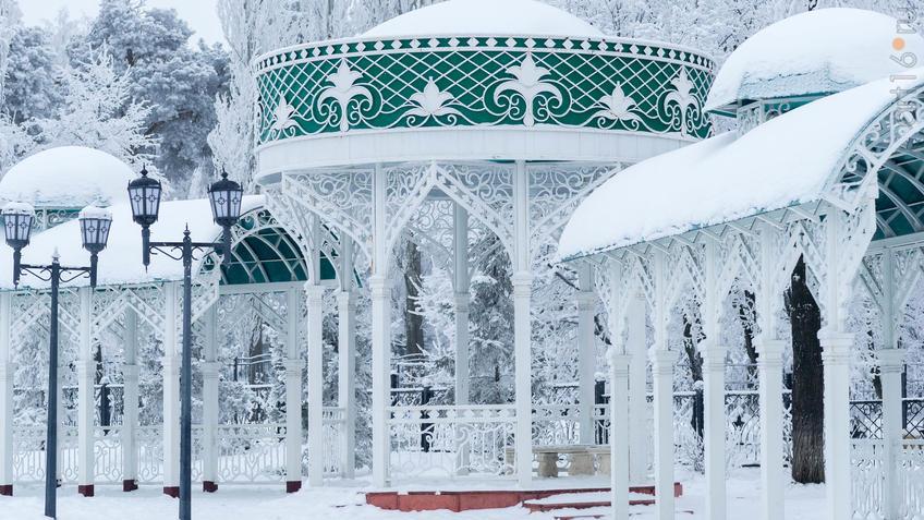 Фото №951083. Art16.ru Photo archive