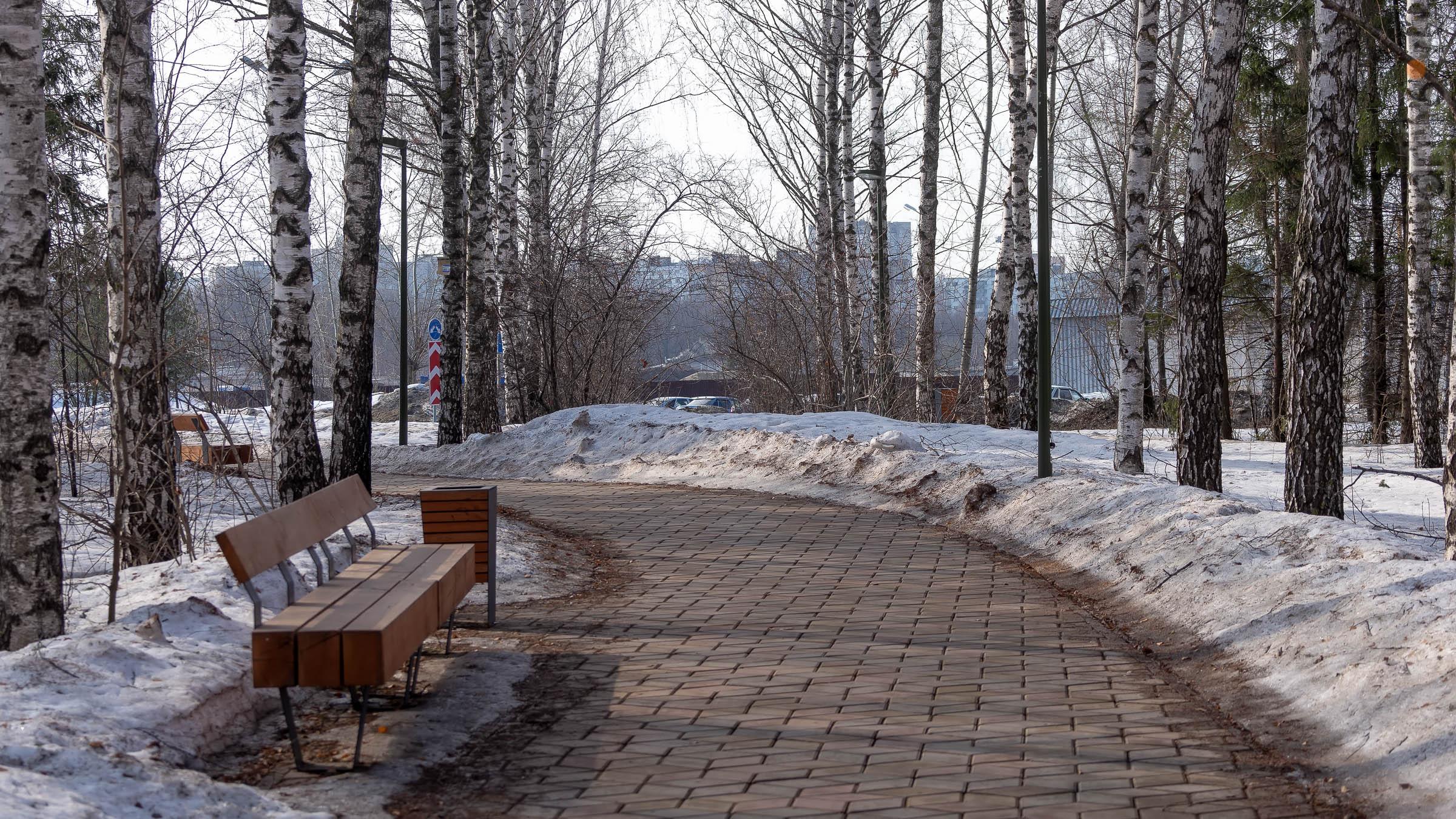 ::20190406 - природа. Конец зимы