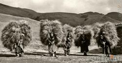 Фотография. Транспортировка, село Шалиб. 1995. Автор Камиль Чутуев