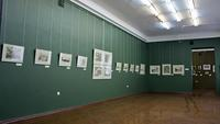Фрагмент экспозиции выставки «Видовая немецкая гравюра XVI-XVII»