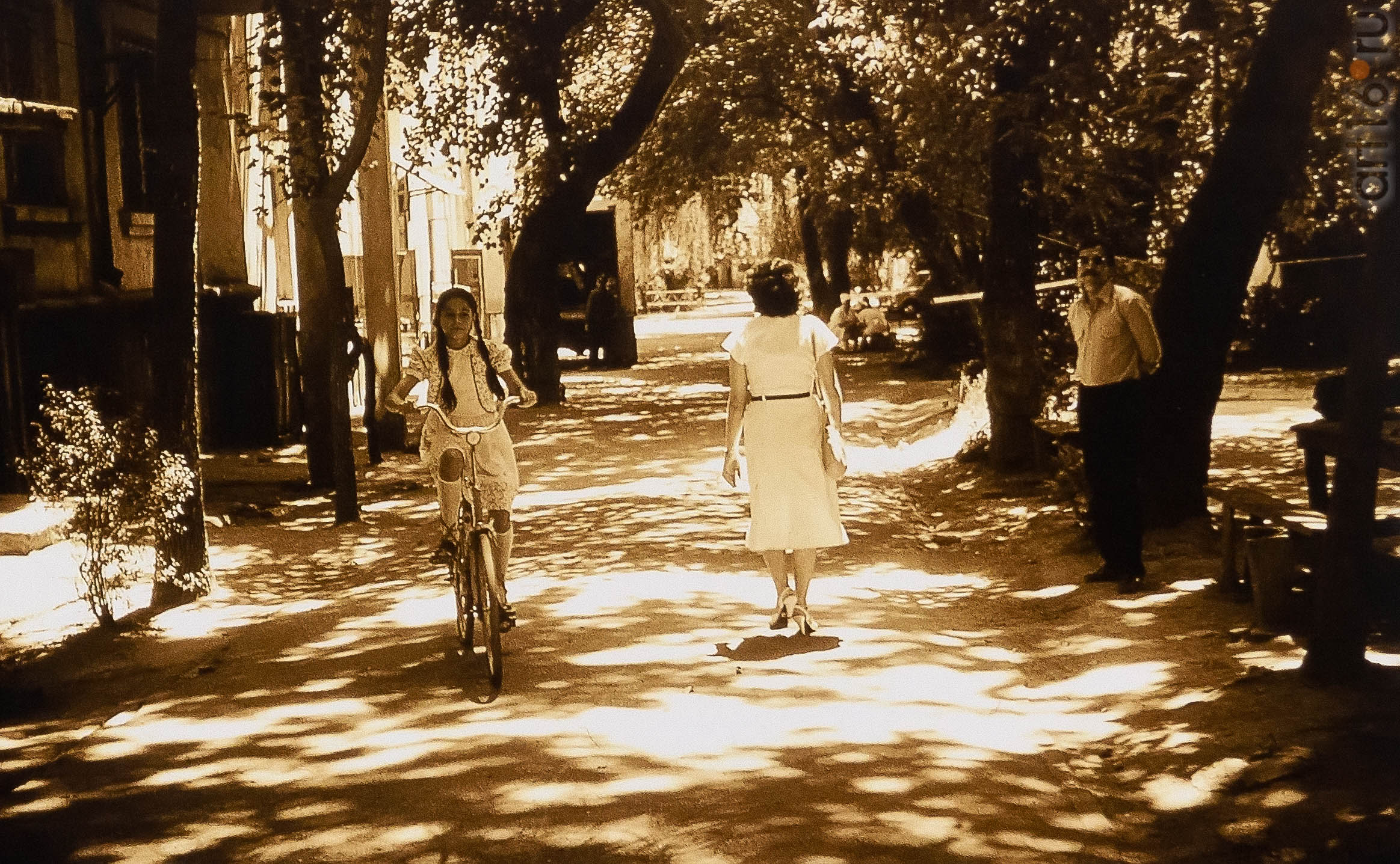 Фото из архива Александра Акилова::Александр Акилов. К солнцу
