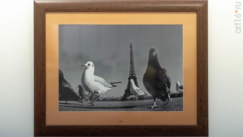 Фото №964121. Фотовыставка «Казань-Париж». Фарит Губаев