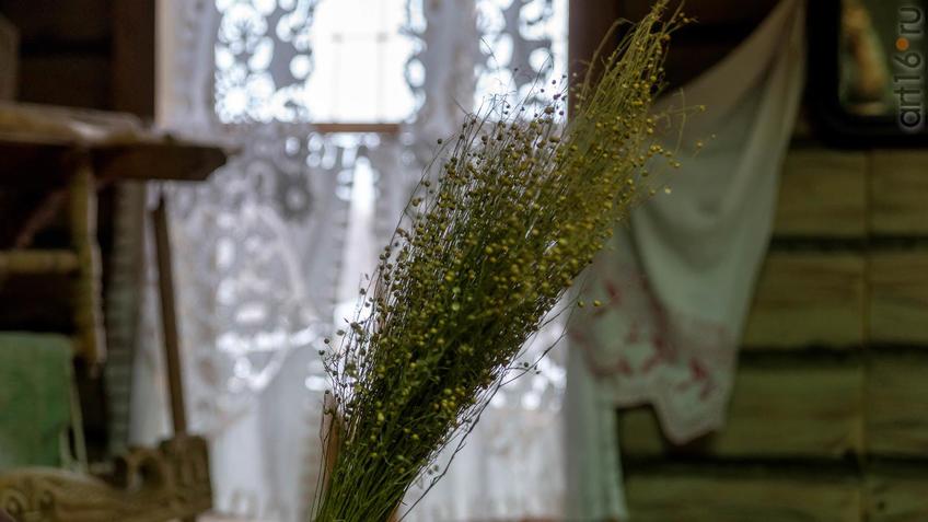 Букет льна::2019 год. Музей А.М.Горького в Красновидово - 40 лет