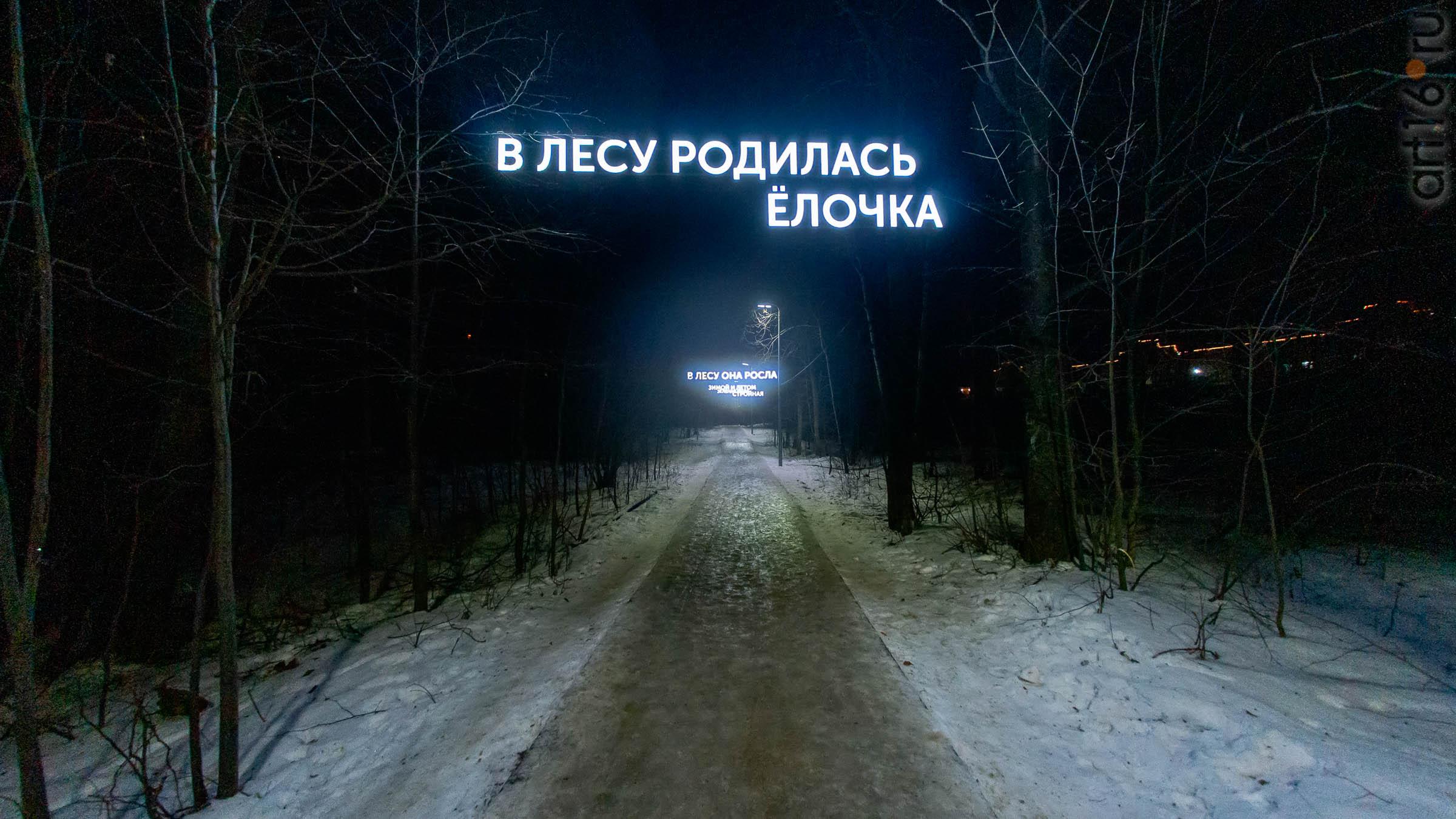 ::Предновогодние снимки. Казань — 2019