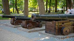 Карабельные орудия на Петровской площади в Воронеже