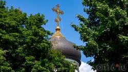 Купол Благовещенского кафедрального собора (Пр. Революции, 14в)