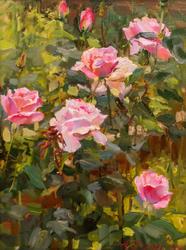 Розовый сад. 2009. Азат Галимов