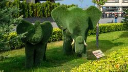 Фигурки слона и слоненка из искусственой травы. Кремлевская набережная