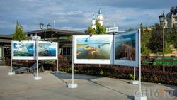 Фотовыставка на Кремлевской набережной