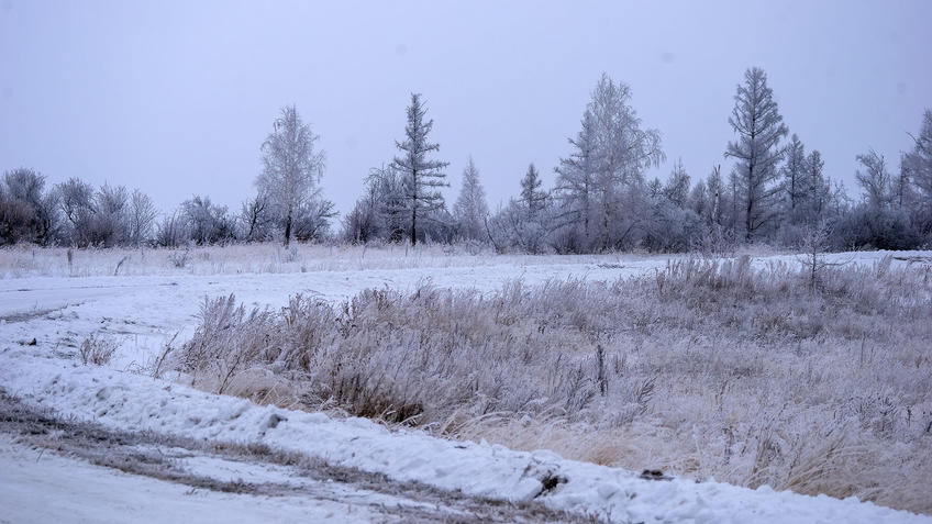 Зима в России::Зима 2021