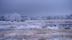 Зима 2021