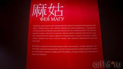 Фея Магу. Информационный банер